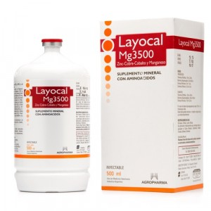 LAYOCAL MG X 500 ML